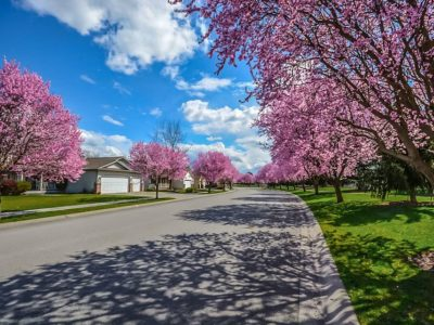 Spring Safety Tips at Home & On the Road