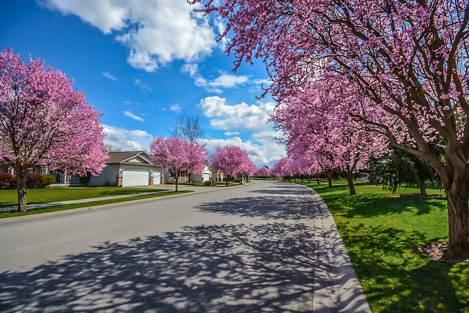 spring home roadway